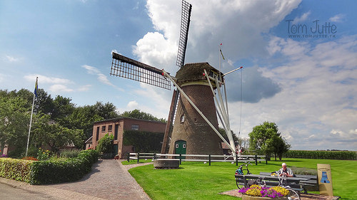 Dutch-10